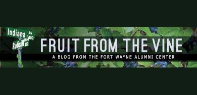 Fruit from the Vine Blog